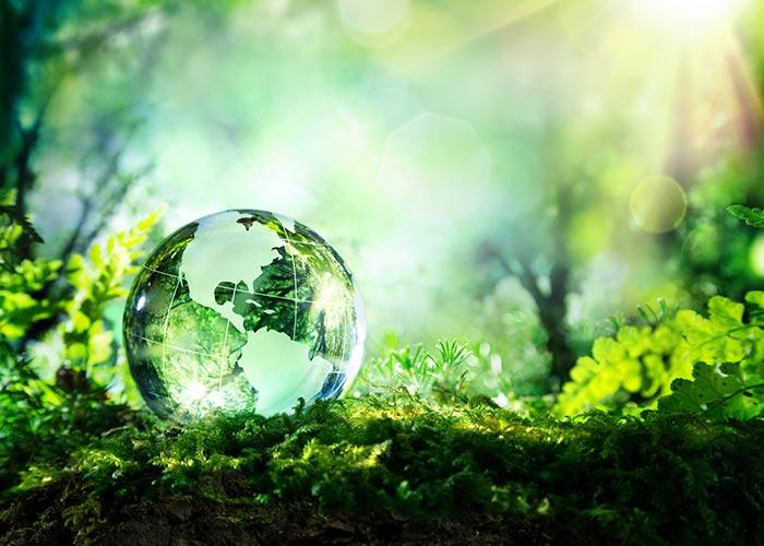 World-Environment-Day-1